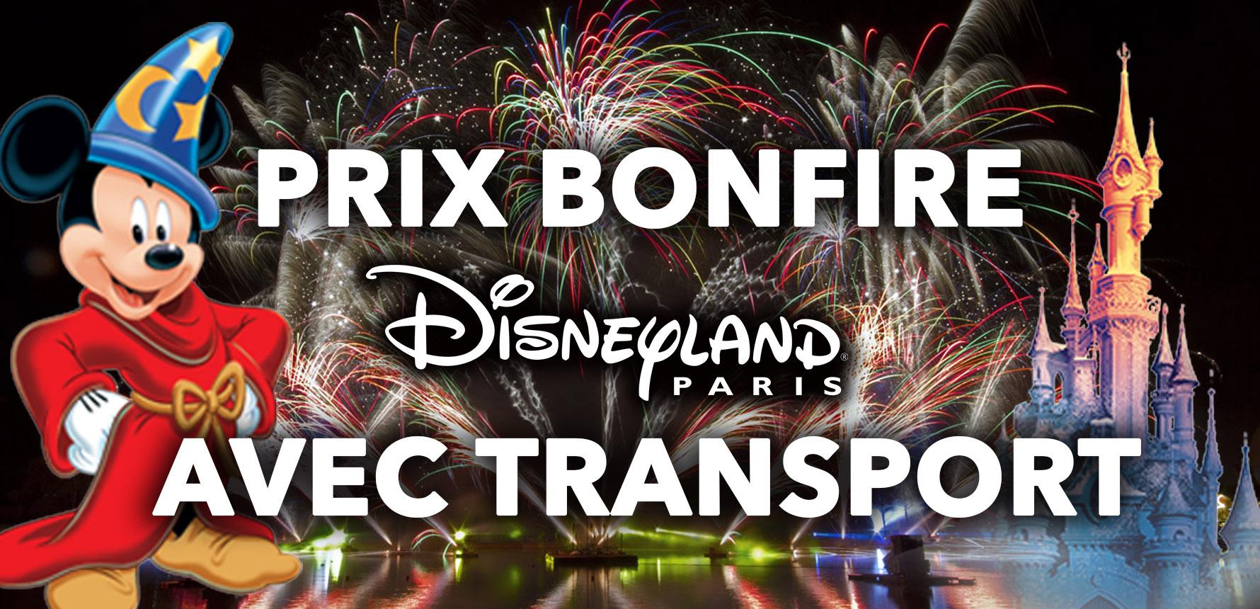 Les prix les + bas pour Disneyland Paris en 2019 - Transport INCLUS