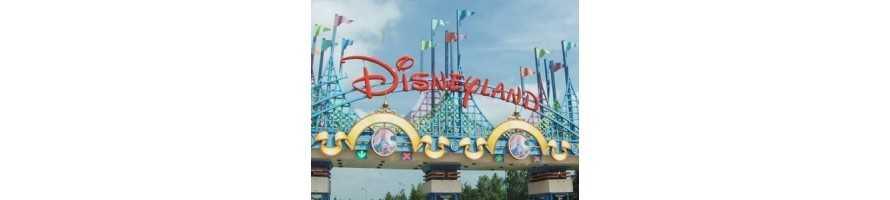 voyage d'un jour ou week-end à Disneyland Paris ou autres parcs d'attractions